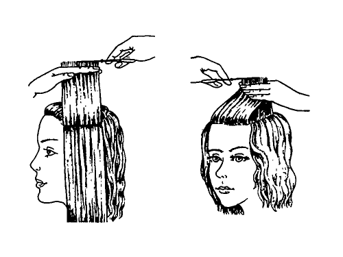 на средней длине волос